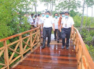 Mangrove Forest Ecotourism Awaits You at Perancak Village