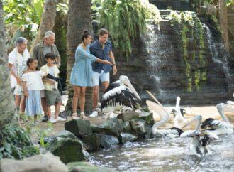 """Bercanda dengan Unggas di """"Bali Bird Park"""""""