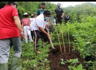 Tanam 1500 Pohon, Jaga Ekosistem Bukit Desa Les