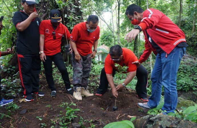 Hutan Desa Panji Ditanami 2500 Pohon