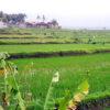 Wow, Kekeran Village Offers Beautiful Terraced Fields