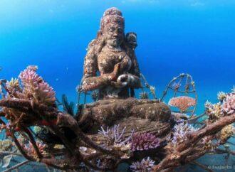 Indahnya Taman Laut Pemuteran