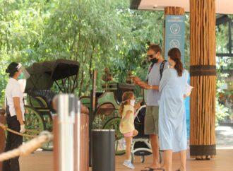 Liburan Aman dan Nyaman di Bali Zoo