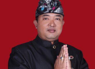 Perpres Nomor 10 Tahun 2021, Peluang Usaha bagi UMKM Mikol Bali