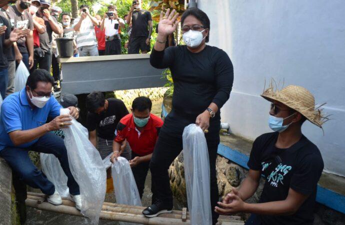Bupati Giri Prasta Tebar 10.000 Benih Ikan Nila di Subak Munggu