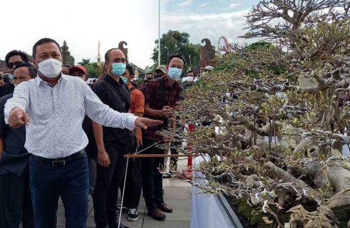 "Pameran Bonsai di Gianyar Siap "" Go International"""