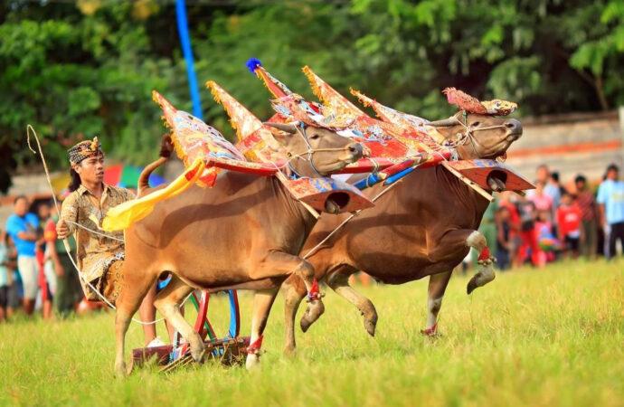 Ini Usulan Pelaku Pariwisata untuk Meningkatkan Perekonomian Bali