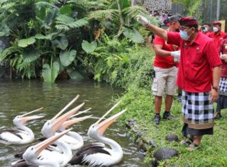 Tasta Wildlife Park, New Tourist Attraction in Tabanan
