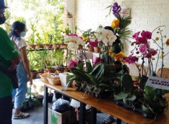 Weekend Artisan at Duta Orchid Garden