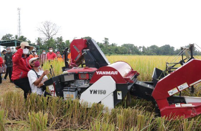 Tabanan Harapkan Harga Pertanian Stabil dan Meningkat