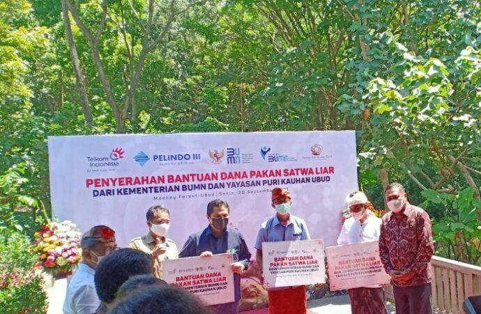 Sangeh Monkey Forest Dibantu Pakan Monyet dari Menteri BUMN