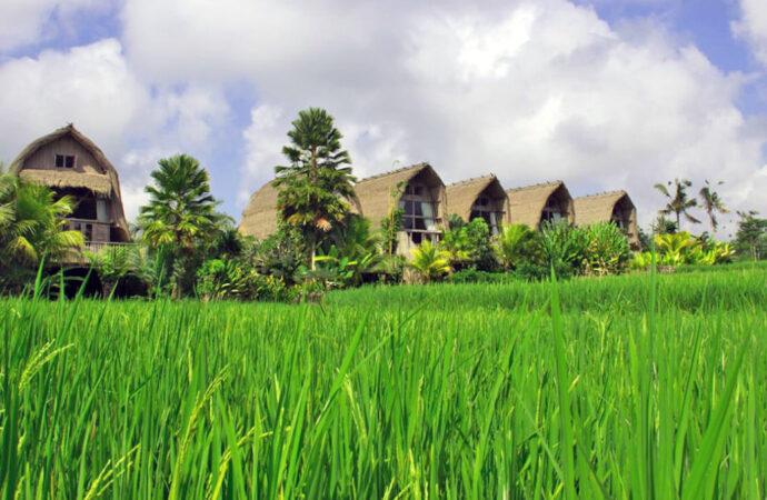 Sweet Memories at De Klumpu Bali Eco Tradi