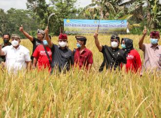 Badung Mantapkan Pembangunan Sektor Pertanian dari Hulu ke Hilir